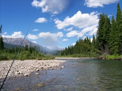 Fly Fishing in the Rocky Mountains (Fernie BC)
