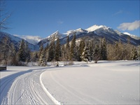 Cross Country Skiing (Fernie BC)